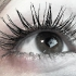 eye2011