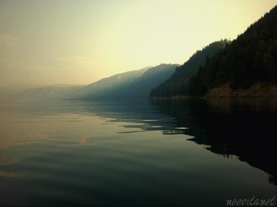 silent-waters-run-deep